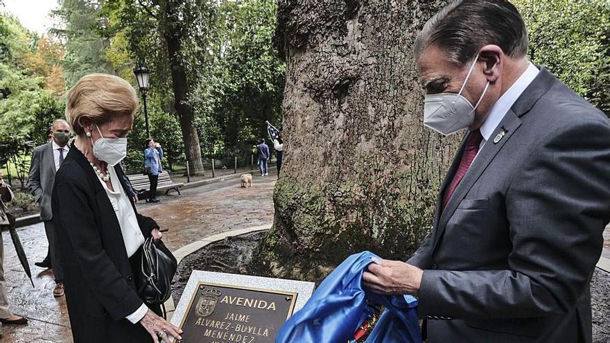 Esplendor filarmónico en el Campo: Jaime Álvarez-Buylla ya tiene su avenida