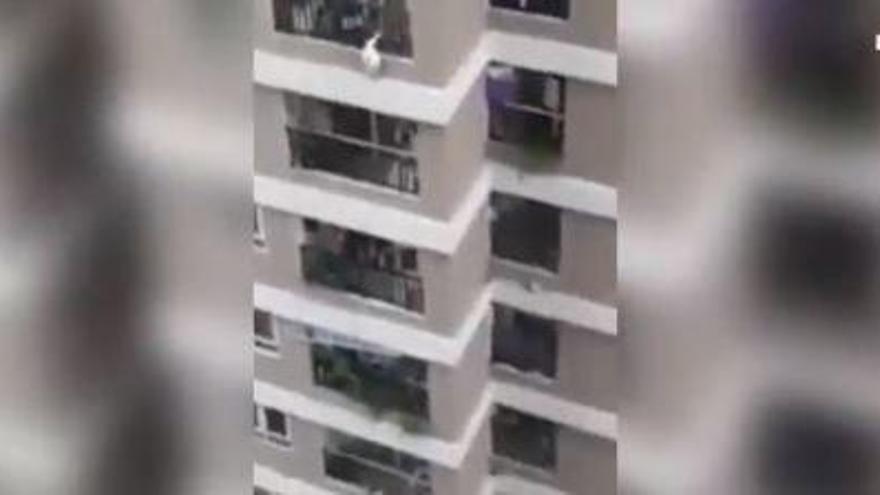 Un repartidor salva una nena que va caure d'una altura de 12 pisos al Vietnam