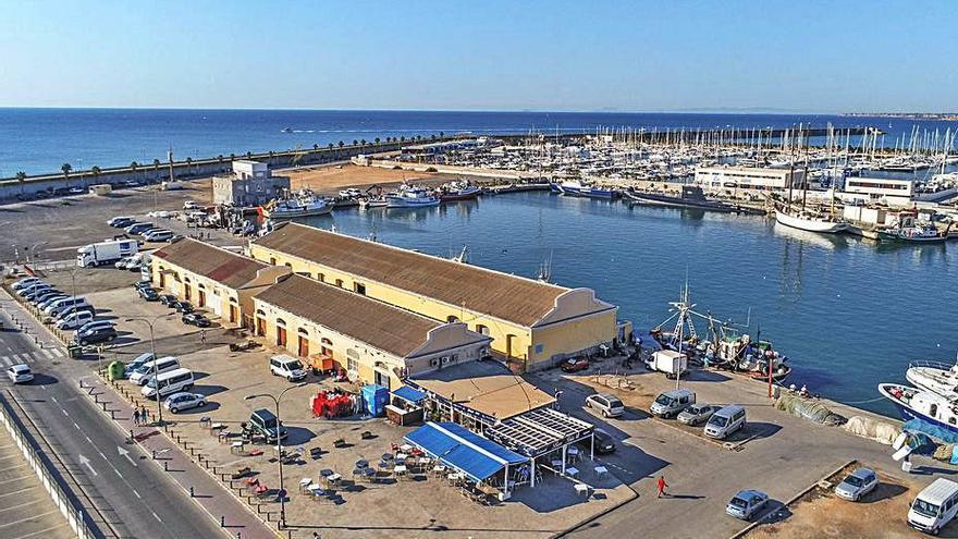 El proyecto de ocio del puerto de Torrevieja prevé suprimir la lonja pesquera