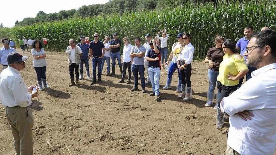 El maíz, a debate en Mouriscade