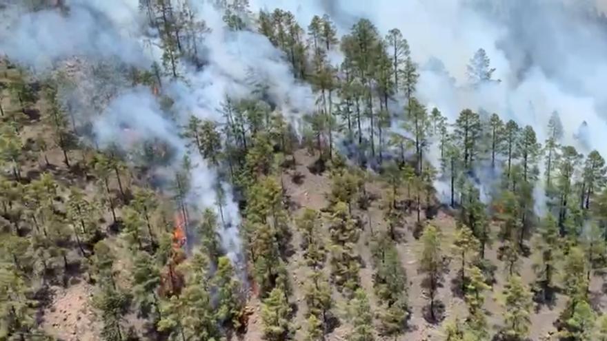La UME se suma a la lucha contra el incendio en Tenerife, que afecta a 400 hectáreas