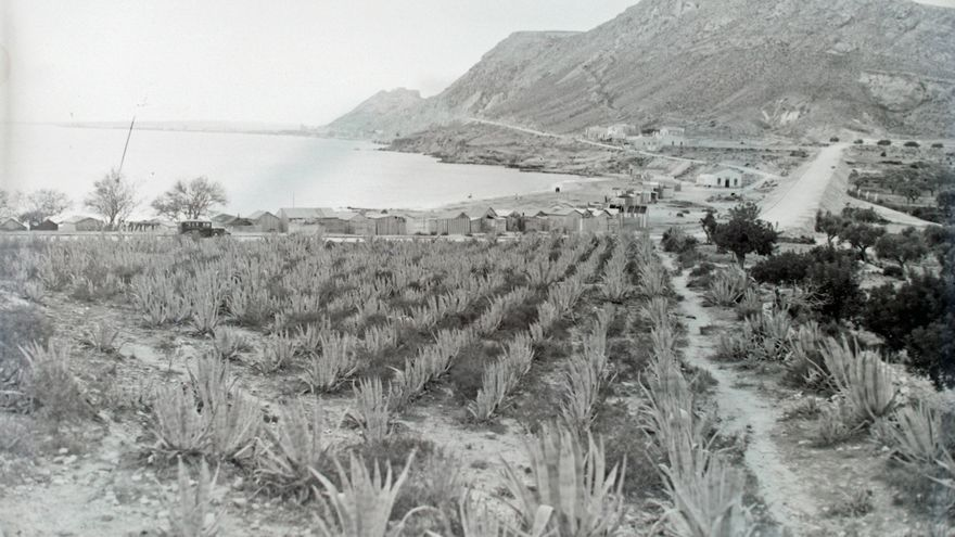 La carretera de la Cantera (I)
