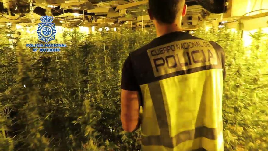 14 detenidos en Alicante por pertenecer a una banda de tráfico internacional de droga