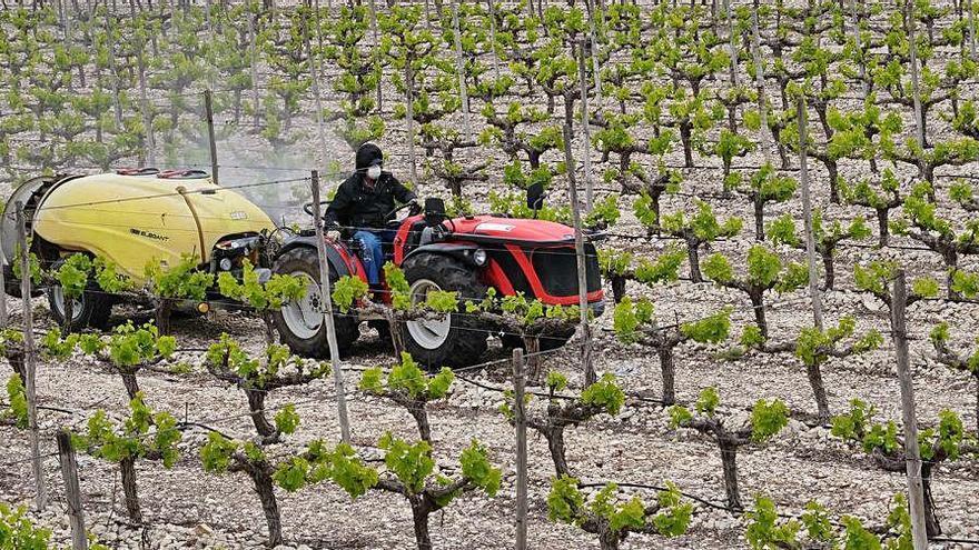 El vía crucis de la agricultura: entre la incertidumbre y el pesimismo