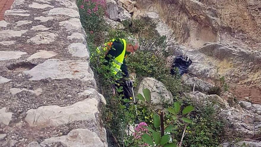 Voluntarios de limpieza en Xaló