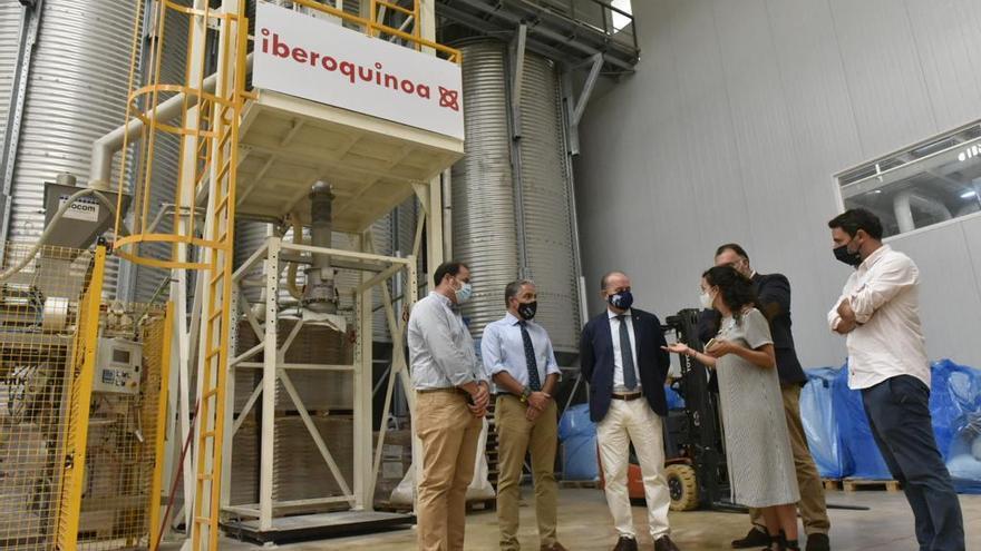 Bendodo destaca el aumento de las exportaciones andaluzas de quinoa