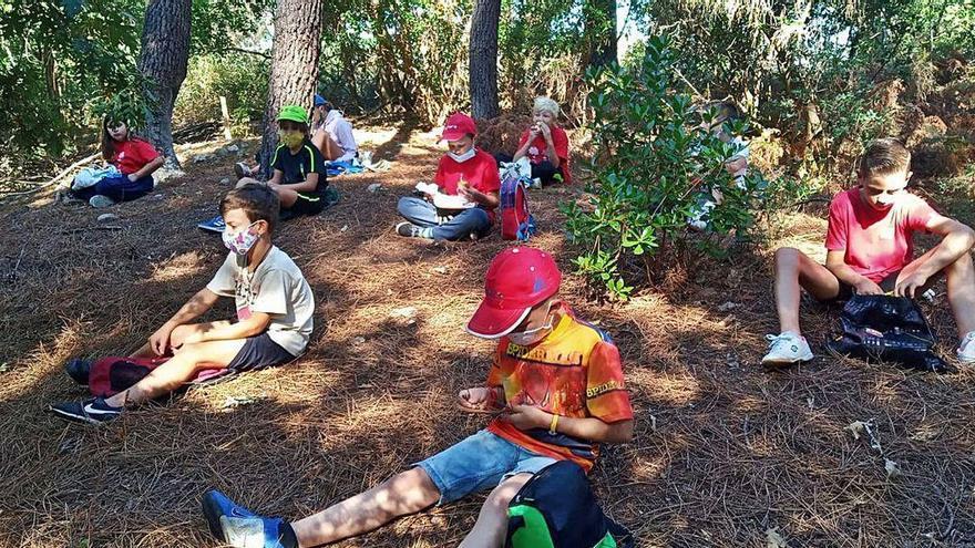 Los campamentos de verano siguen en el Aula da Natureza