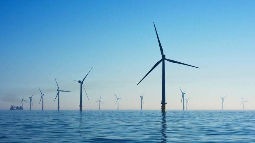 Un grup de científics es pronuncia sobre els projectes eòlics al mar