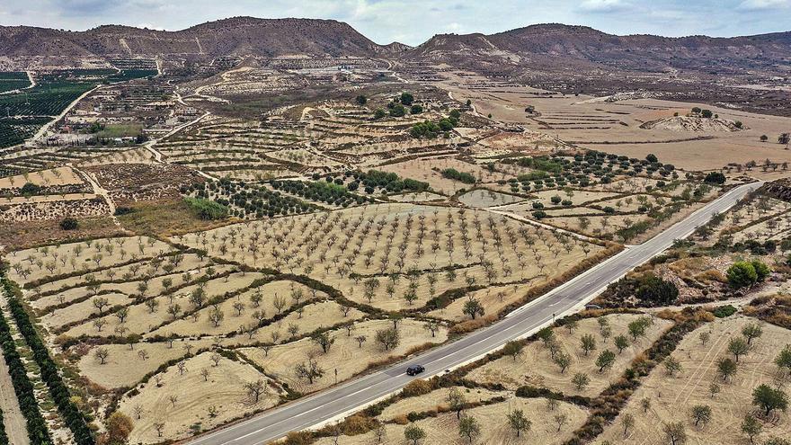 La Generalitat rechaza la planta de tratamiento de purines en Torremendo