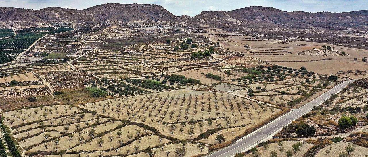 Terrenos donde el Grupo Lucas había presentado el proyecto para la planta de purines.  |