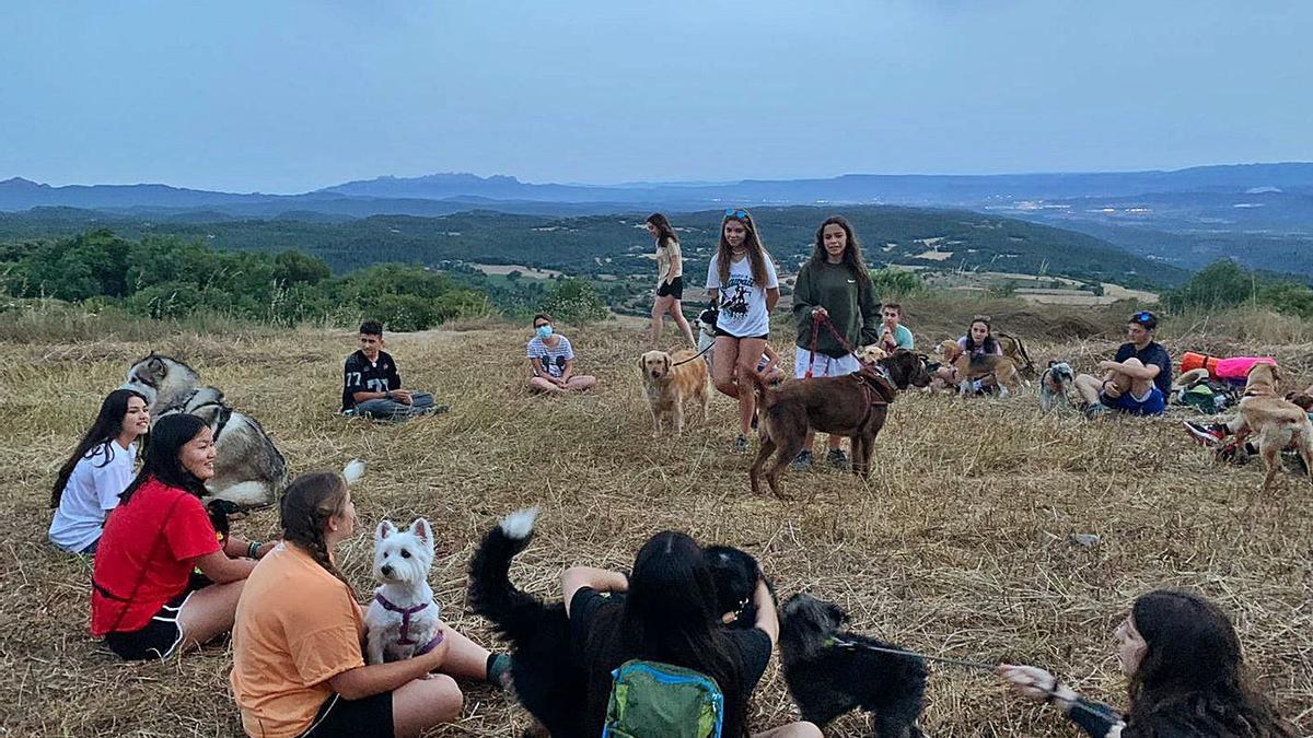 Un moment de descans durant la travessa d'una vintena de joves i els seus gossos al Moianès | ARXIU PARTICULAR
