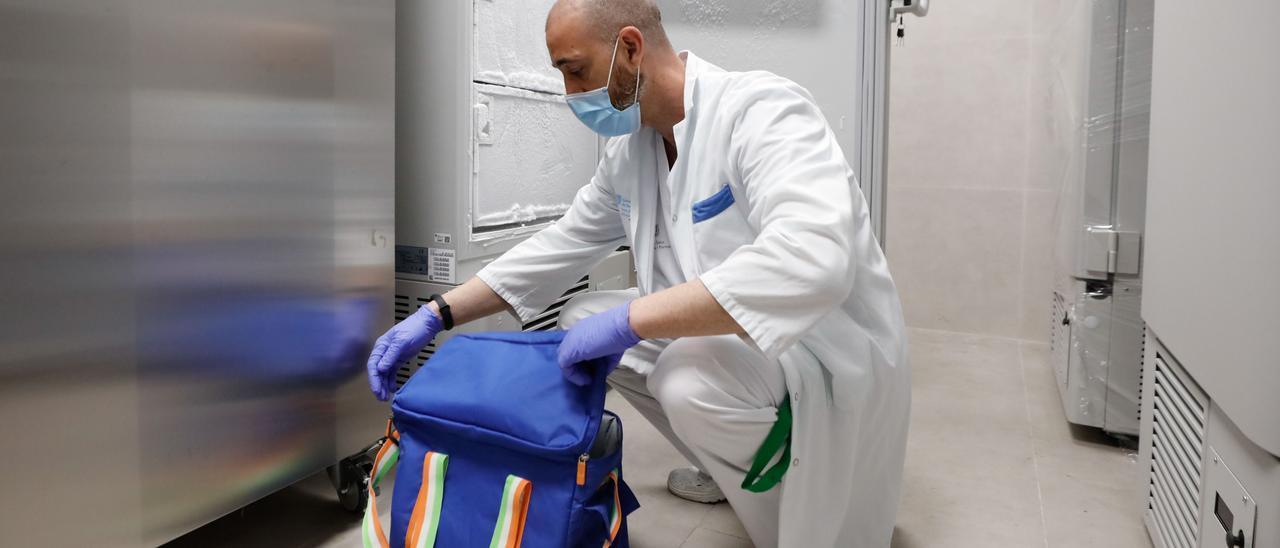 El enfermero Benjamín Vargas coloca las dosis de las vacunas llegadas al Hospital Can Misses. Juan A. Riera
