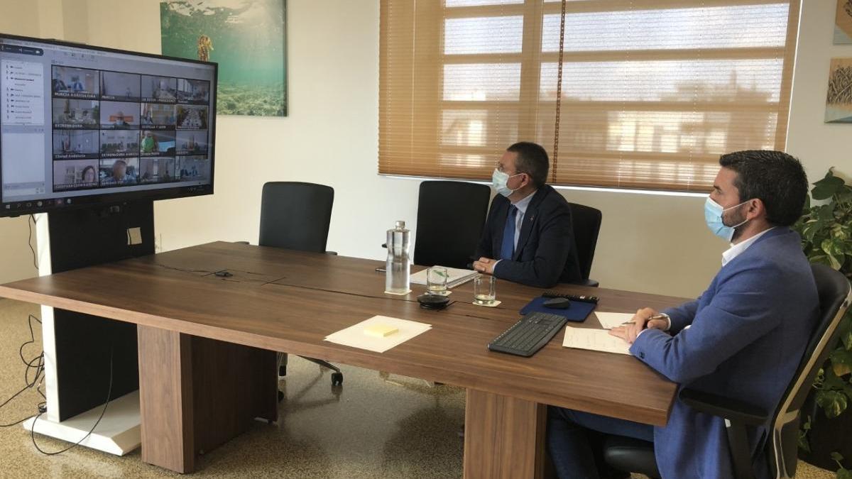 El consejero Antonio Luengo se reúne por videoconferencia con los ministros de Sanidad y Agricultura. l. o.