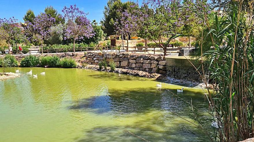 La CHS rectifica y autoriza el riego del parque de la Cañada Marsá de Benijófar