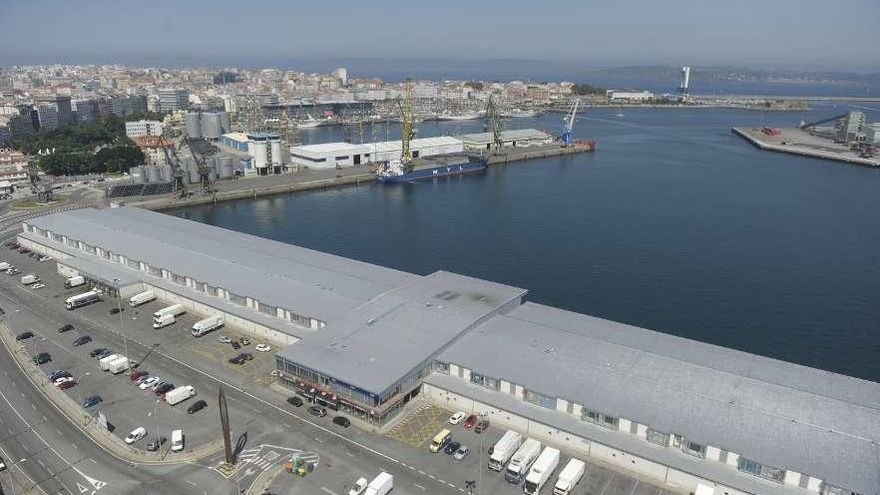 La lonja defiende su sitio en el puerto