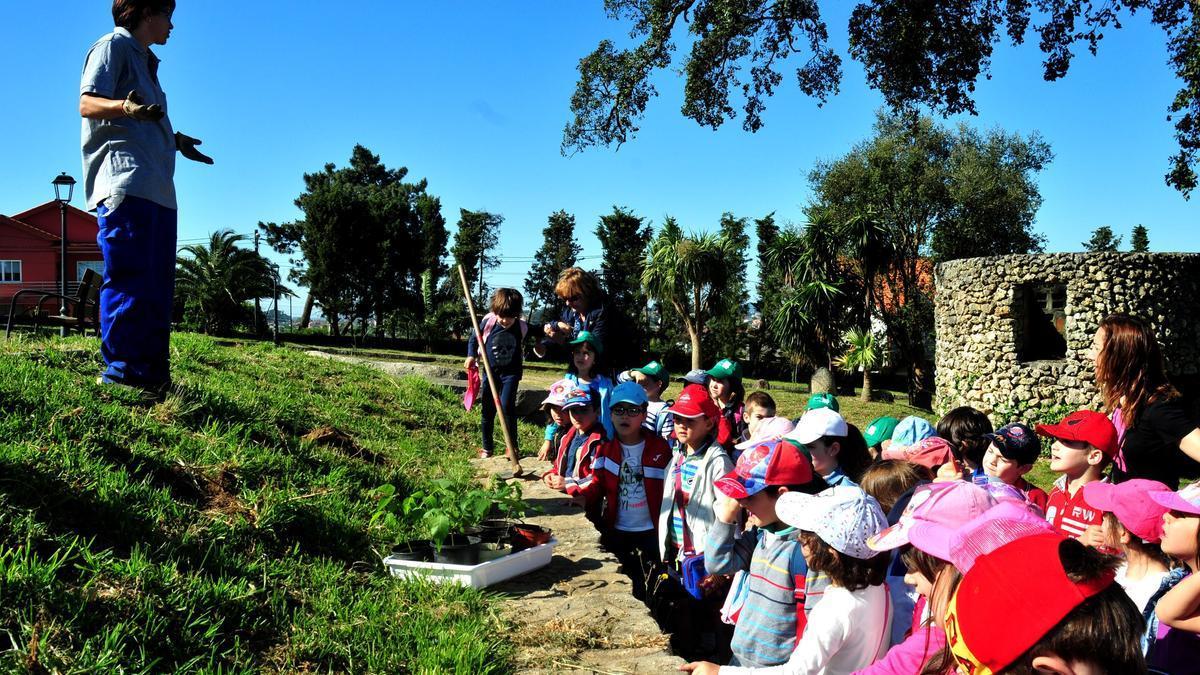 Alumnos del CEIP Xulio Camba en una actividad pre-Covid.