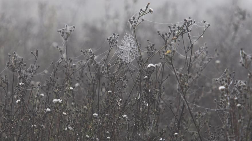Cuéllar y Fresno de Cantespino (Segovia) registran dos de las cinco temperaturas más bajas en España