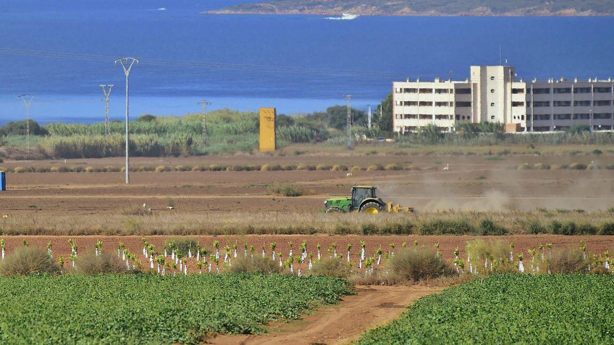 Un tractor labra la tierra, ayer, en una parcela agrícola frente al Mar Menor.