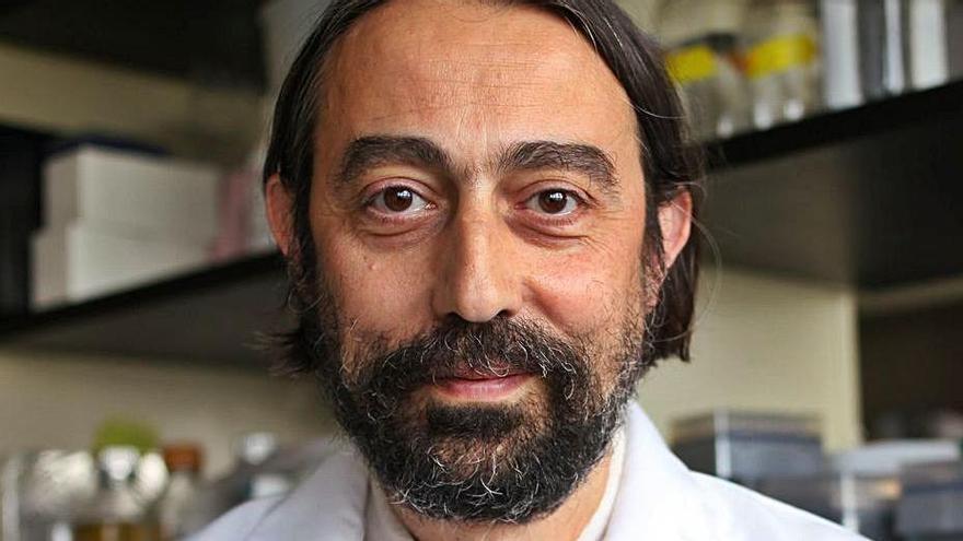 """Adolfo García-Sastre: """"Va a ser difícil que no se disparen los contagios en una tercera ola"""""""