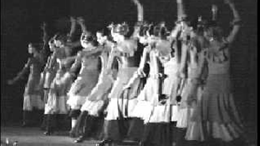 Auditorio El Palmeral