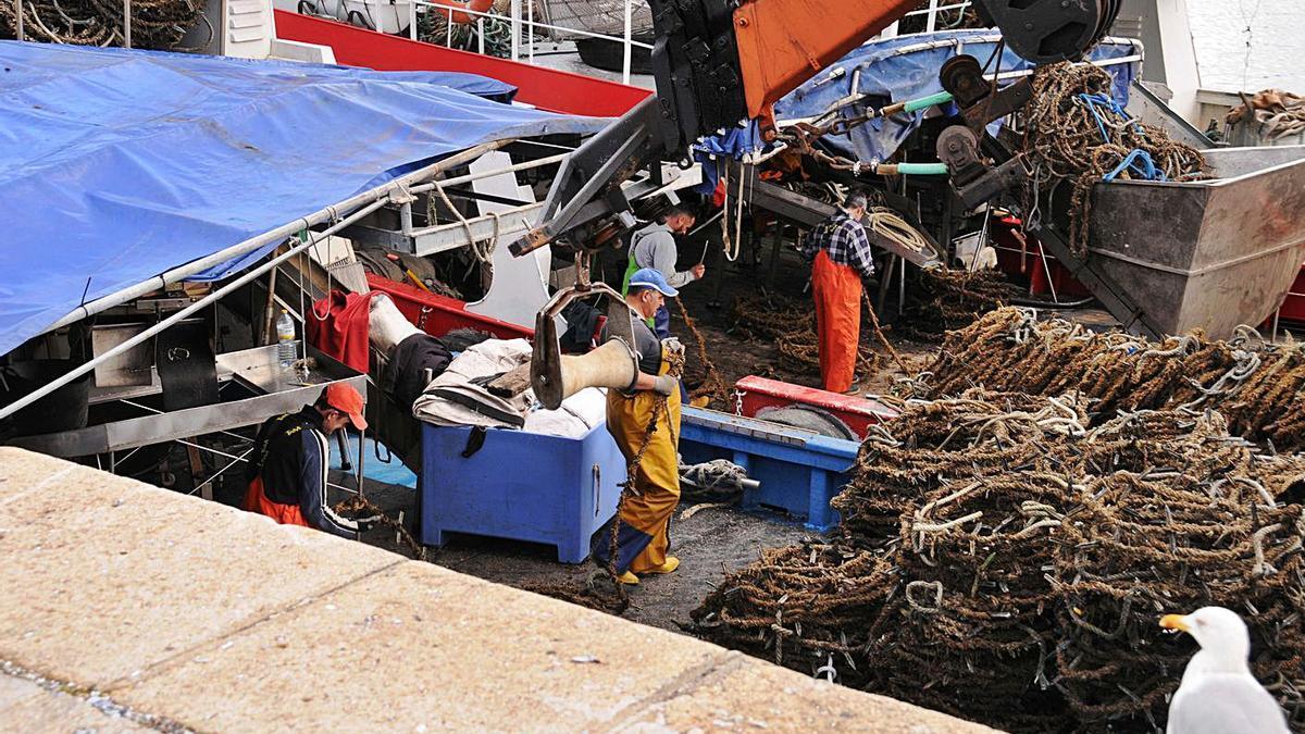 Bateeiros trabajando ayer en el muelle de Bueu en la limpieza de las cuerdas del mejillón. |   // G.NÚÑEZ