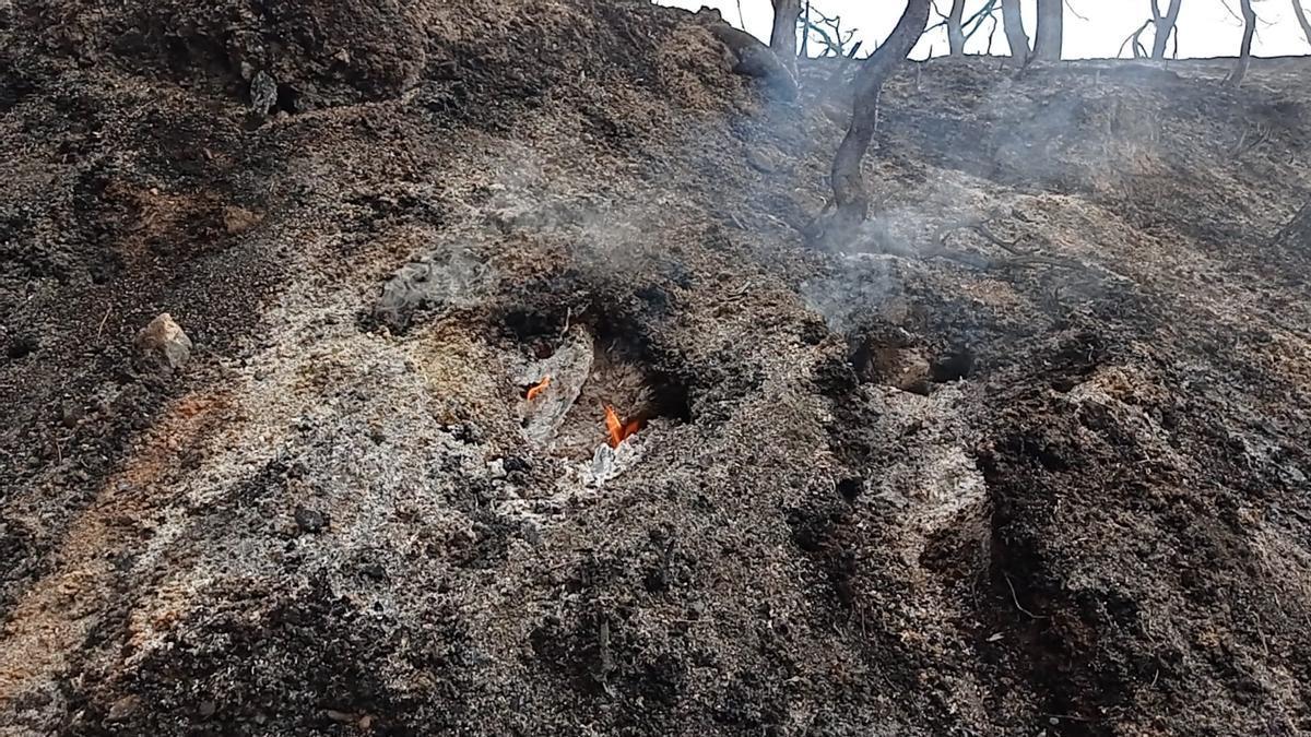 Incendi a la Conca de Barberà i a l'Anoia, en fotos