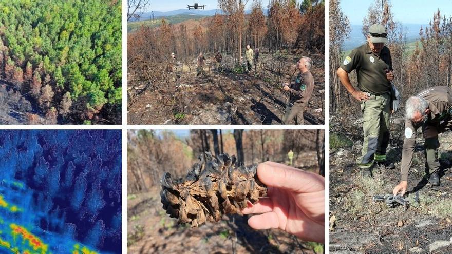 Así investigan los detectives del fuego en Galicia