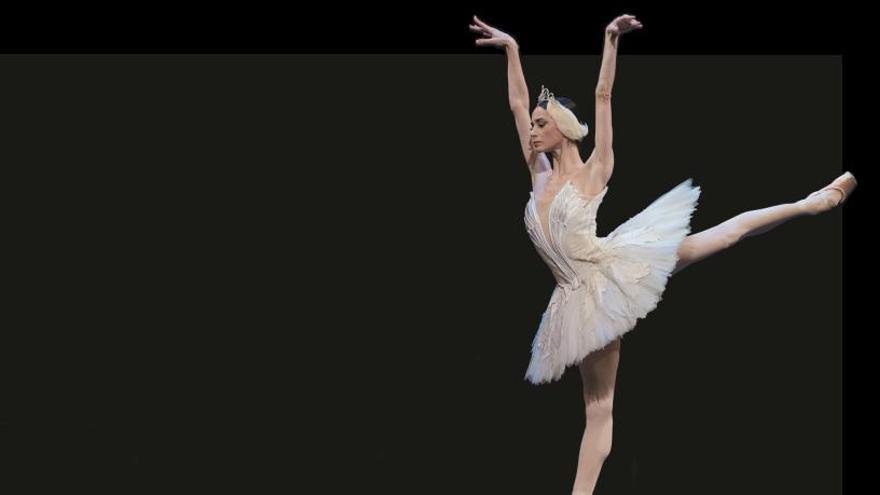 Una noche para el ballet