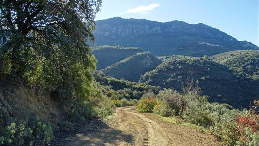 Cerros de Roa