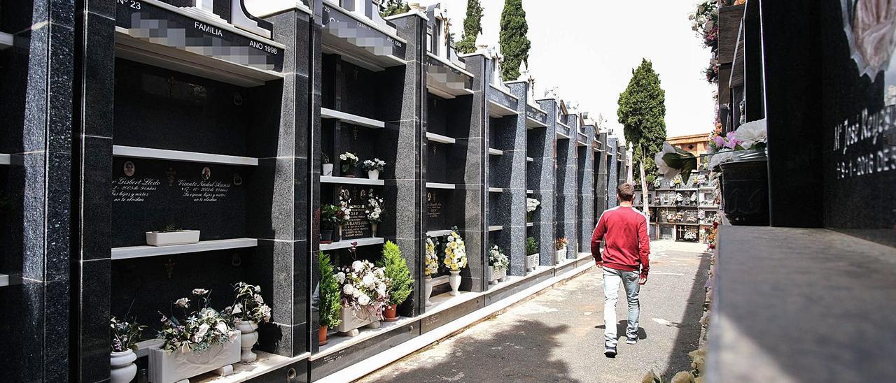 Los panteones que se construyeron a comienzos de los años 90 sobre la fosa común del cementerio Santa Bárbara de Elda. | ÁXEL ÁLVAREZ