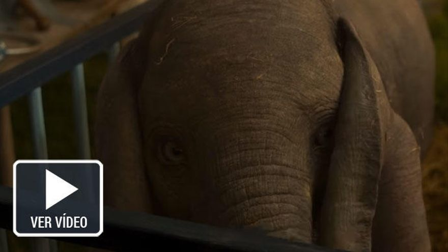 'Dumbo' de Tim Burton, protagonista de los estrenos de cine de la semana