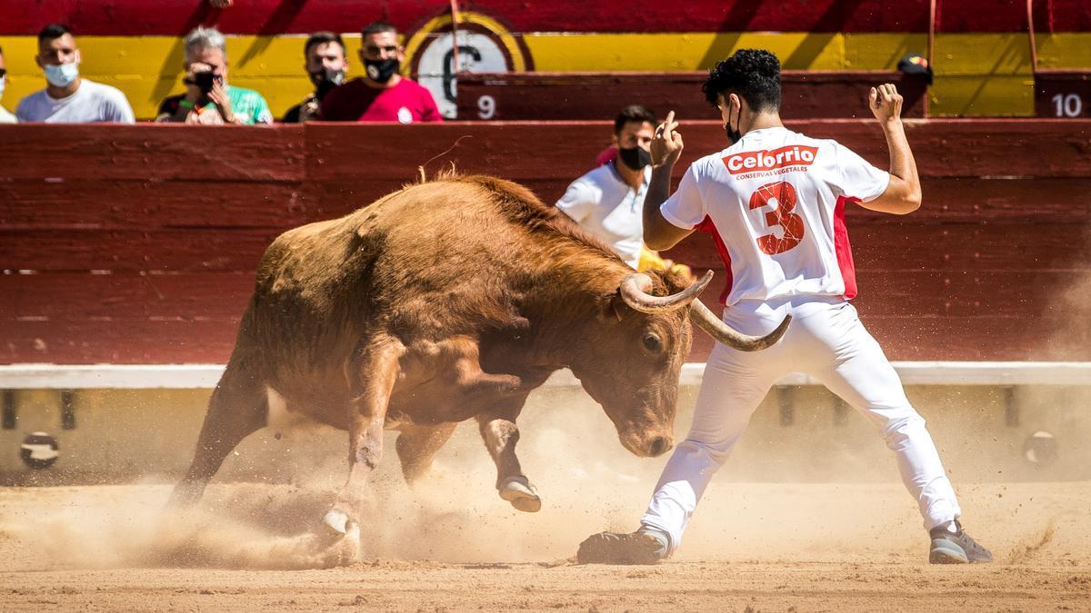Las vacas de Germán Vidal pusieron a prueba el temple del de Puertominglavo, que se hizo con el triunfo.