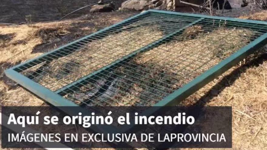 El 80% del paisaje quemado de Gran Canaria se ha recuperado un año después