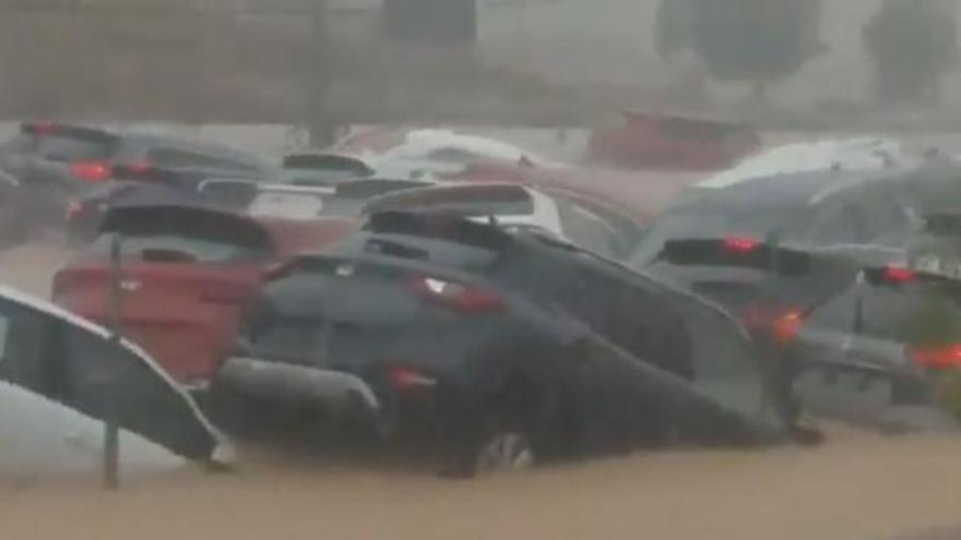 El río Segura podría desbordarse en Orihuela la próxima noche