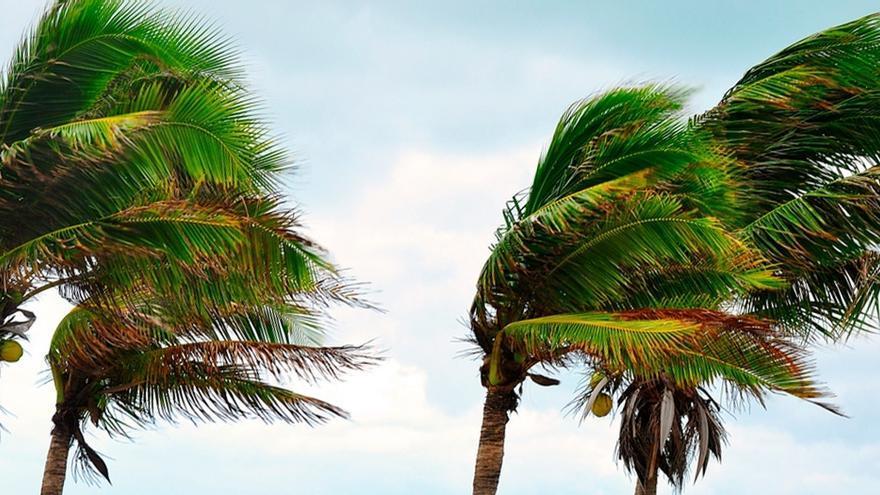 Finaliza la situación de alerta por vientos en Tenerife y La Palma