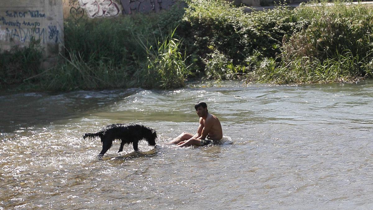 Parque Fluvial del Túria, zona del  Centro de Interpretación de la naturaleza, zona recreativa de Ribarroja.