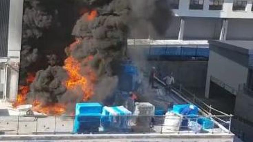 Obreros del edificio incendiado en València retiran material junto a las llamas para evitar que el fuego crezca