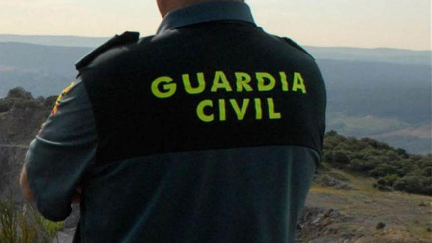 Mata a golpes a un carnero en Canarias y le pide a su sobrino, de 14 años, que lo grabe