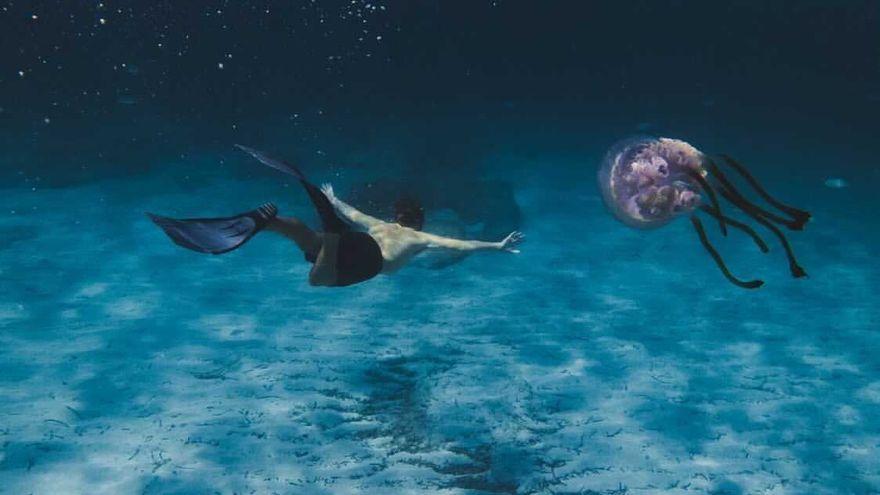 Una medusa de más de un metro en ses Salines