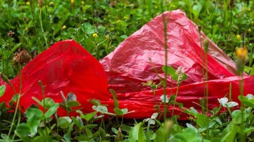 Bolsas de plástico o de papel ¿con qué debo ir a la compra?