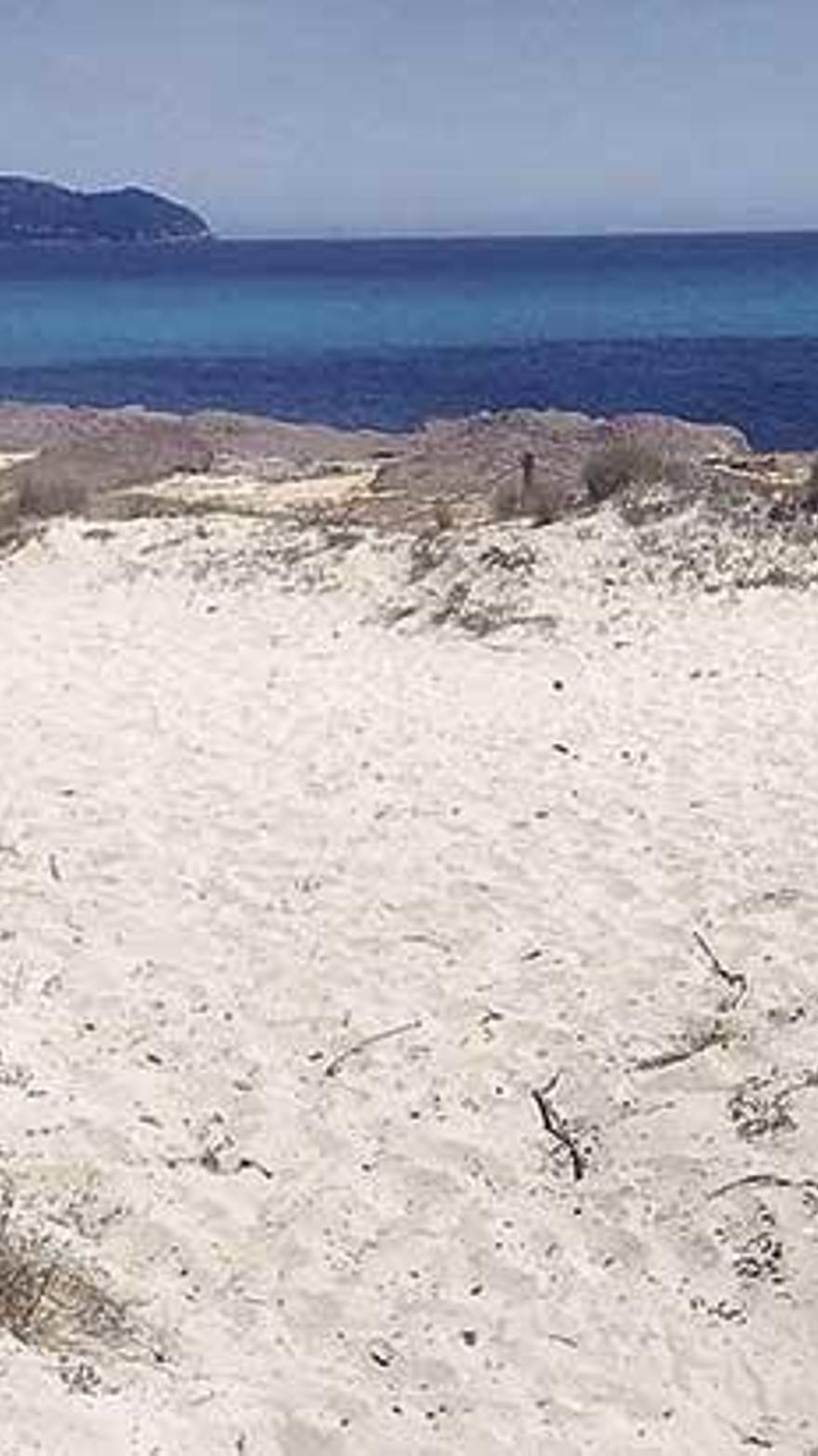 Los populares sospechan que se puede haber cogido arena del sistema dunar para regenerar la playa.