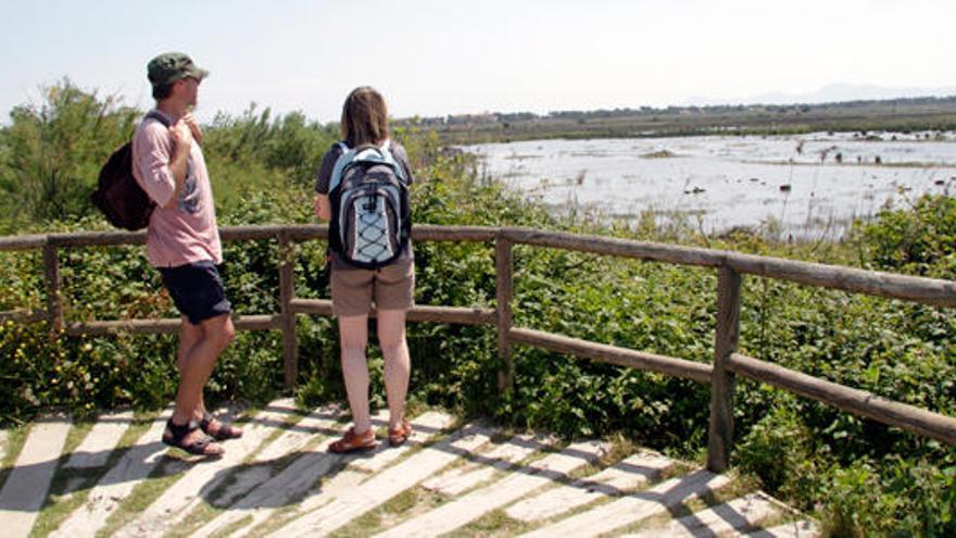 El Govern amplia el parque natural de s'Albufera un 24%