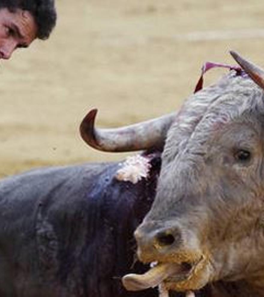 Reinventar los toros