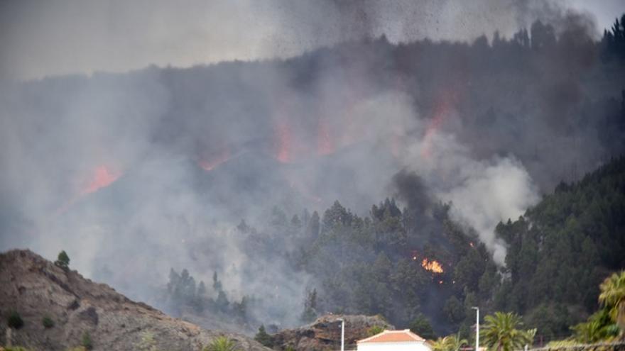 Al octavo día, estalló el volcán en La Palma