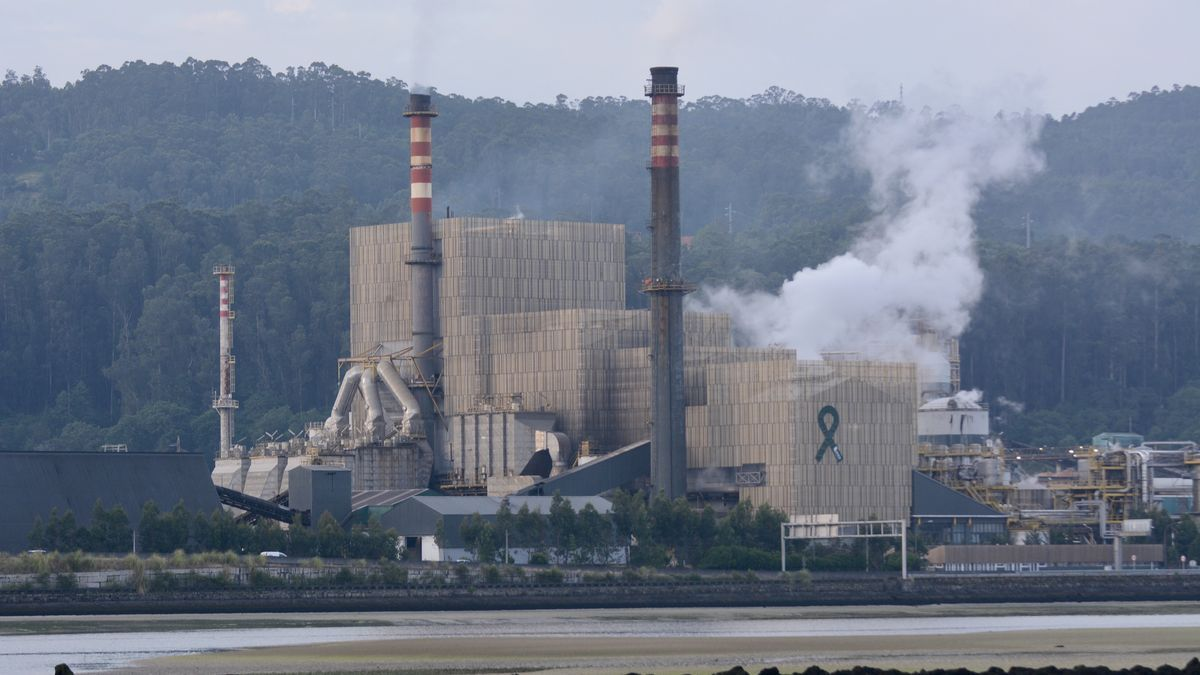 Imagen de la fábrica de Ence en Lourizán