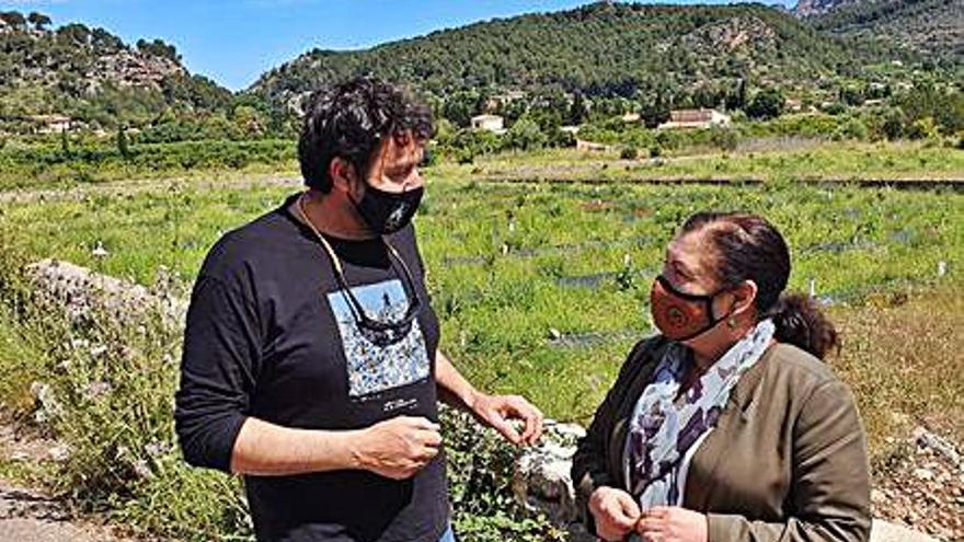 Sóller pide a Agricultura una balsa de riego  y la depuración terciaria