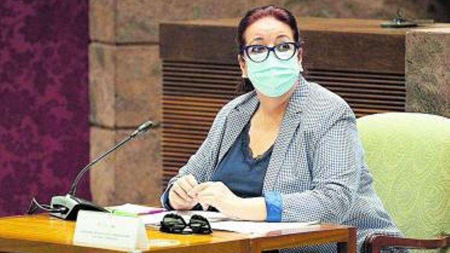 Canarias desarrollará  este año la ley de bibliotecas y fomento de la lectura