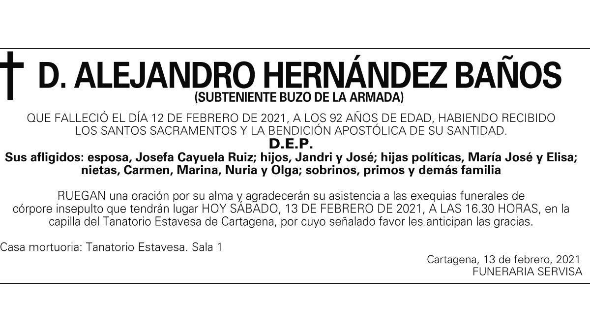 D. Alejandro Hernández Baños