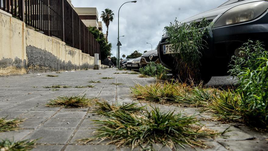 Unos cuantos parches, un puñado de malas hierbas y una de aguas fecales en La Paterna