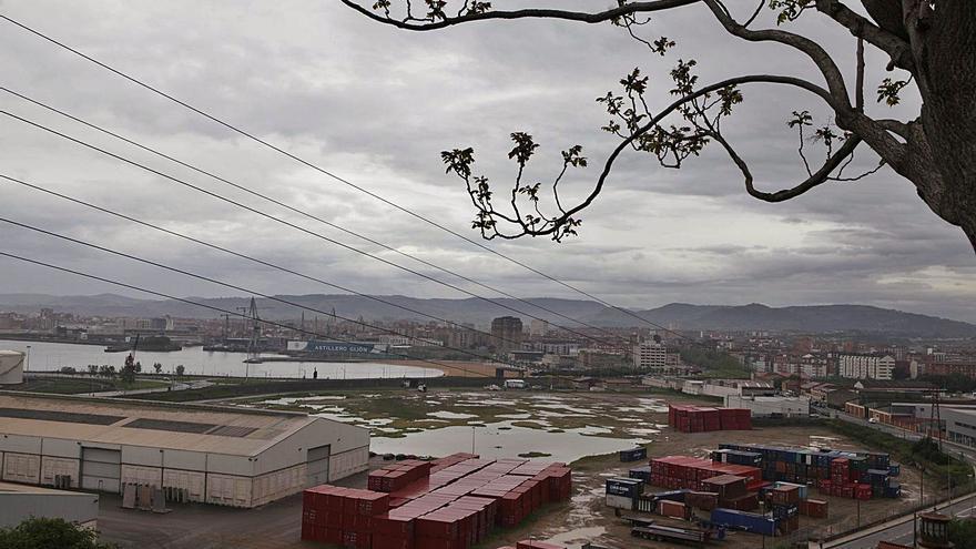 Los dueños de la granja de lenguados priorizarán a empresas asturianas en la construcción